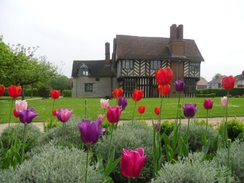 Blakesley Hall and tuplis in the garden