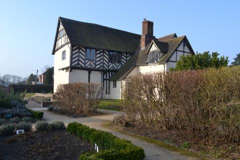 A hedge at Blakesley Hall