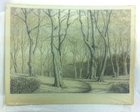 Drawing of trees by Alice Barnwell