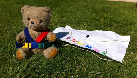 Teddy landing safely on the ground