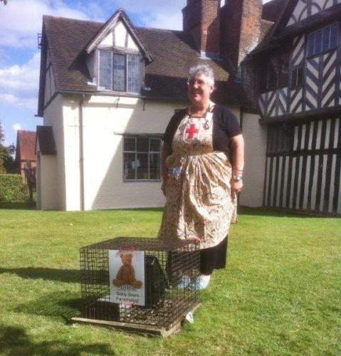 Nurse Teddy with rabbit